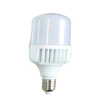颇尔特 LED高效节能灯泡,25W E27 白光,POETAA757,单位:个