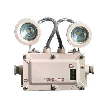 颇尔特 防爆应急照明灯,2/2W 白光,POETAA622,单位:个