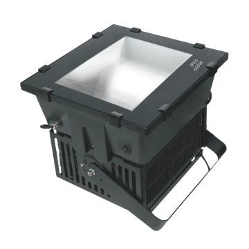 森邦照明 LED投光灯,SPL902 功率1000W 白光6000K U型支架装,单位:个