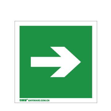 安赛瑞 自发光消防警示标签-箭头,自发光不干胶,100×100mm,20244,10片/包
