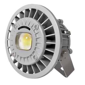 通明电器 LED灯,ZY8607S-L80-200 支架式,220V 80W白光5000K,单位:个