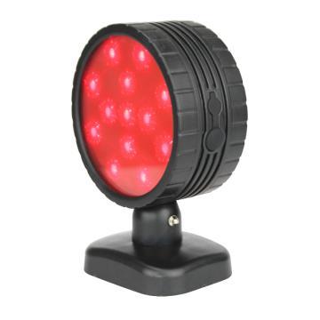 通明电器 LED双面方位灯信号灯,ZW4303 ,单位:个