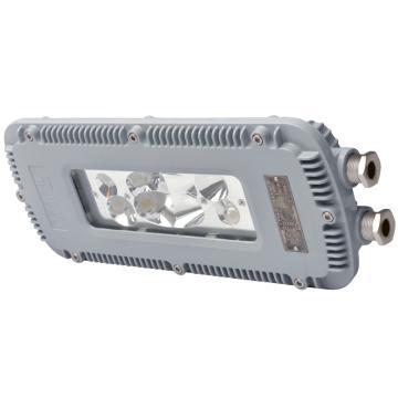 通明电器 DGS24/127L(A) 矿用隔爆型LED巷道灯 煤安号MAH100093,24W白光5000K吊链式,单位:个