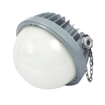 通明电器 BC9302P-L60-200 LED防爆平台灯 60W白光5000K 不含法兰,单位:个