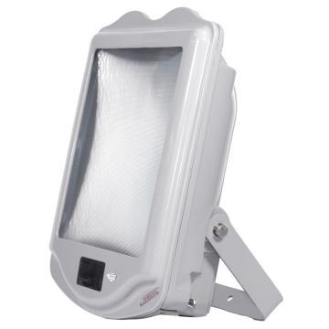 通明电器 防眩通路灯,ZY8200-J250 功率250W白光支架式安装,单位:个