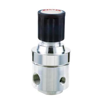 捷锐R23SL系列不锈钢中等流量减压器,R23SLGK-DGG-06-06
