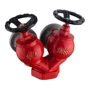 双阀双口型消火栓,SNSS-65