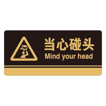 安赛瑞 亚克力标识牌-当心碰头,3M背胶,260×120mm,35252