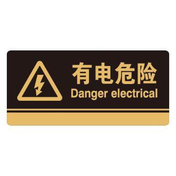 安赛瑞 亚克力标识牌-有电危险,3M背胶,260×120mm,35253