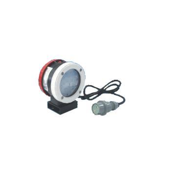华荣 LED铁路客车灯LED尾部侧灯,RLESL100功率白光:1W,红光:06W白、红,单位:个