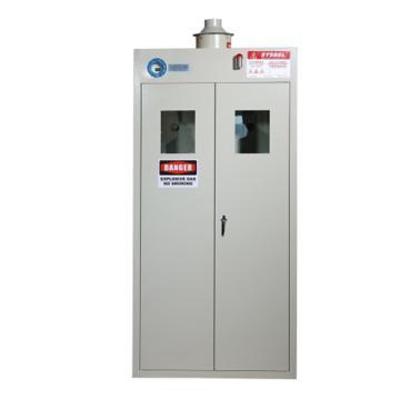 西斯贝尔SYSBEL 两瓶型Ex智能整柜防爆气瓶柜,双门/手动,含声光报警,WA730102