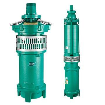 新界 QY型充油式小型潜水泵,QY65-10-3L3