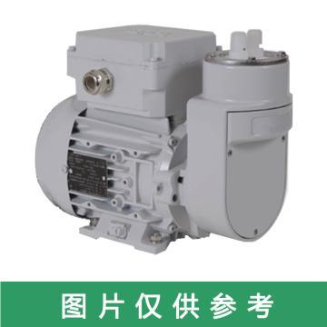 GE 预处理取样泵泵头配件,JXLP01