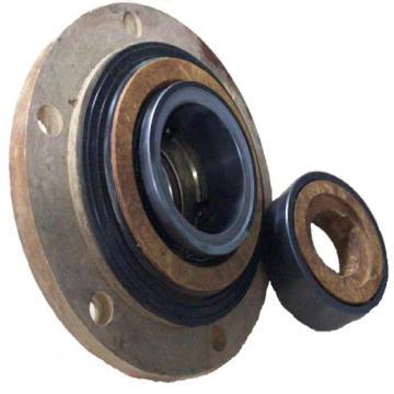浙江兰天,脱硫FGD外围泵机械密封,SZ01-P1E1/05-M080