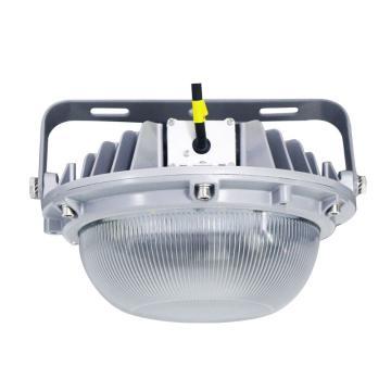 众朗星 LED泛光灯,ZL8825-L70,70W LED 白光,单位:个