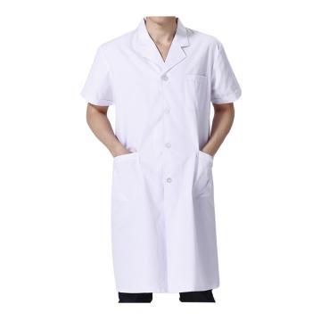 实验室大褂,白色,涤棉,短袖,L(同系列10件起订)