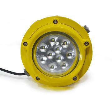 德普威DNP LED防爆泛光灯DL607,60W 白光 防爆标志Exd llC T6 Gb IP66,单位:个