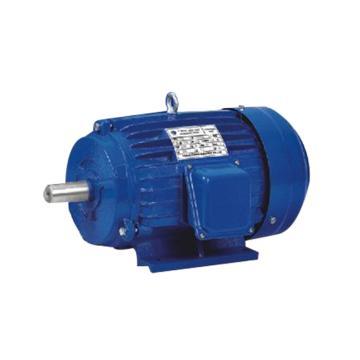 营丰机械抛丸机专用电机,功率2.2KW 电压380V,YX3-132S2-2,227600004279
