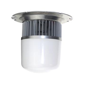通明电器 照明灯 ZY2000-L60 功率60W,单位:个