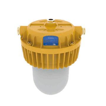 勤上源光 LED防爆泛光灯,KSL8710A 白光,单位:个