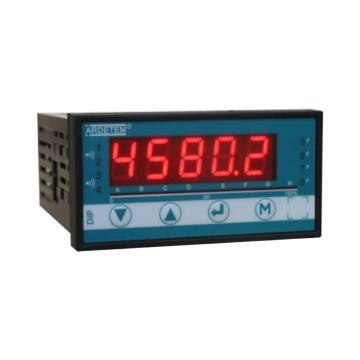 ARDETEM 变送器,DIP420-A1R4