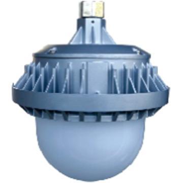莱奥斯 LED平台灯 PTD1001功率LED 50W 白光,支架式,单位:个
