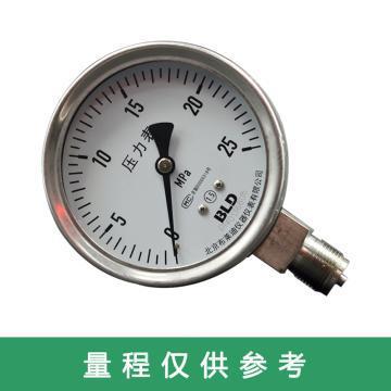 布莱迪 轴向带边充油耐震压力表含复检合格证书 YTN-63HZT 0-60MPa