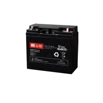 山特SANTAK 12V,18AH蓄电池,C12-18