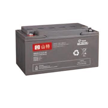 山特 12V,65AH蓄电池,C12-65