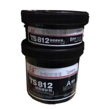 泰盛 钢质修补剂,TS812,500g/套