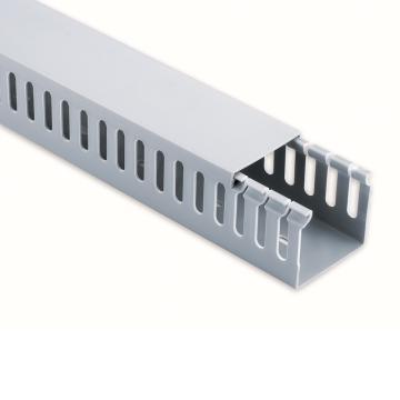 德力西DELIXI 80×60配线槽 密齿 银灰正料2米,DHAPXC8060MCSGZD,30根/箱