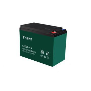 天能TANON 电动车电瓶车电瓶铅酸蓄电池,6-EVF-45(4只起订)