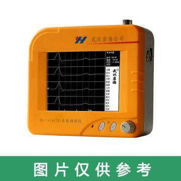 武汉岩海 激振器,RS-LB01,武汉岩海高应变配件,1箱1台