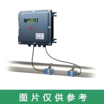 道盛 防爆高温外夹式超声波流量计,TUF-2000D-TM-1-HT(DN300) 高温中型探头 -40~160℃ 10m线