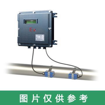道盛 防爆外夹式超声波流量计,TUF-2000D-TL-1(DN700) 标准大型探头 -40~90℃ 10m线