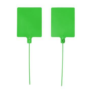 安赛瑞 物流大吊牌,物流挂签,封条封签扎带(100根装)绿色