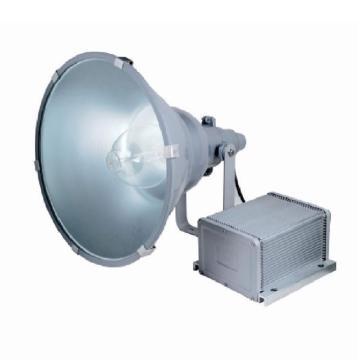 顶火(深圳光明顶) 防震型投光灯,GMD9220-1000W
