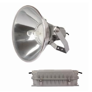 顶火(深圳光明顶) 防震型投光灯,GMD9221-400W
