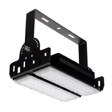 顶火(深圳光明顶) LED投灯灯,GMD9105-100W