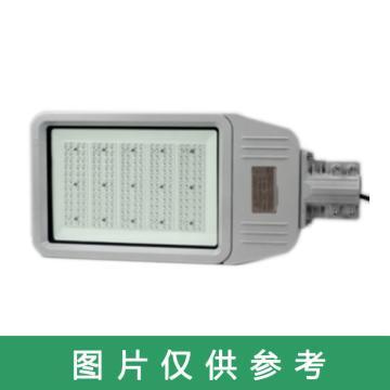 津达 LED免维护节能路灯,KNDFB6130A,200W,不含灯杆,单位:个