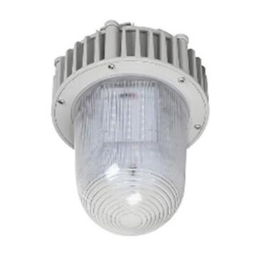 津达 LED免维护平台灯,高玻璃六面发光,KD-PBD0186,20W,单位:个