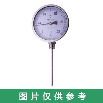 西域推荐 不锈钢双金属温度计,WSS-411 径向 0-100度 M27*2 直径10MM L=250MM 配套管 精度1.0级