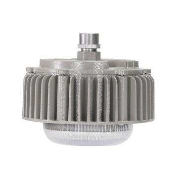 源本技术 LED平台灯应急电源箱,30W应急90分钟,YB5320应急电源箱,单位:个