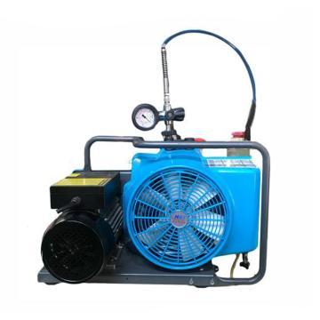 海安特 压缩空气填充泵,HL-100,220V