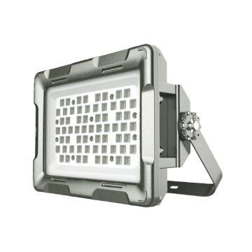 欧辉 LED防爆灯,250W,220V,白光,OHBF8260,大款,U型支架,不含其它安装附件,单位:个