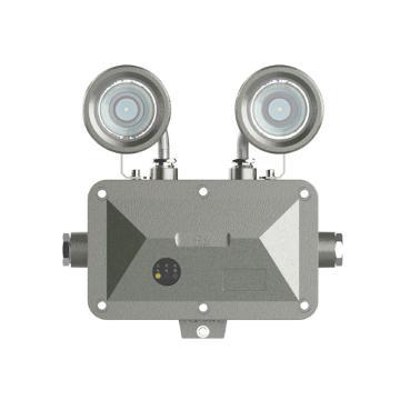 欧辉 LED防爆应急灯,2×3W,220V,白光,OHBF8190,不含其它安装附件,单位:个