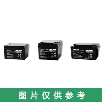 德利森 蓄电池,12V/120Ah,PK120-12