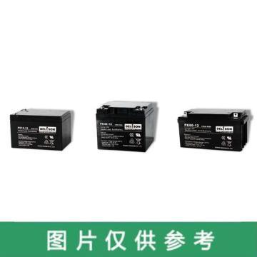 德利森 蓄电池,12V/25Ah,PS25-12
