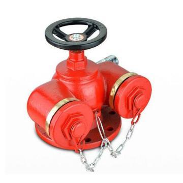 友安 消防水泵接合器,SQD100-16A