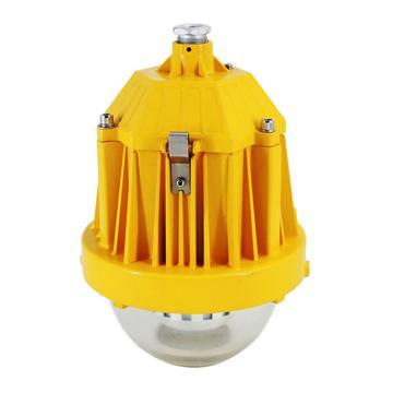 卓安照明 LED灯,ZBD119-36W,不含安装附件,单位:个